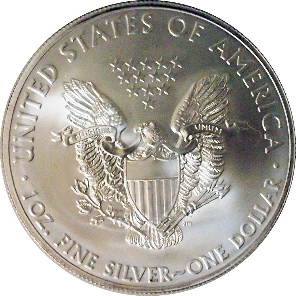 2013 Silver American Eagle Brilliant Uncirculated Gem US Coin 1 oz .999 Fine Silver $1